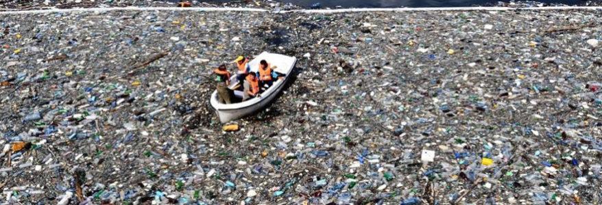 Le plastique : symbole mortel de nos choix de développement