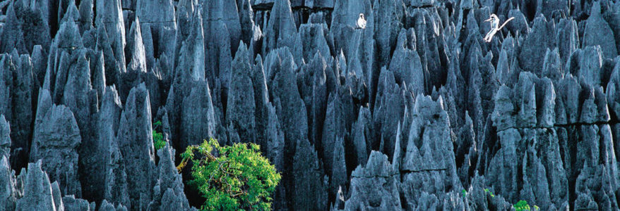 Le labyrinthe secret de Namoroka